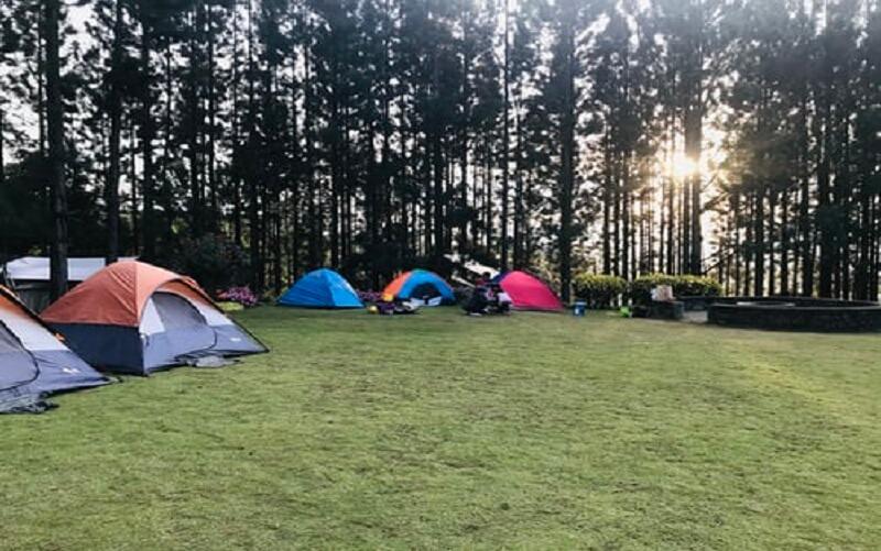 Camping Discount Coupon