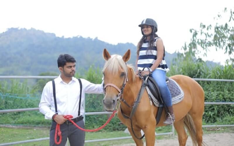 Horse Ride Discount Coupon