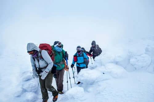 Himachal Snow Trek Tour