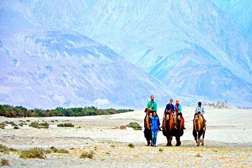 Nubra Valley Leh Ladakh