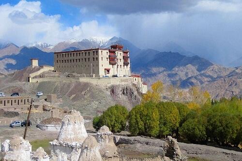 Stok Palace, Leh