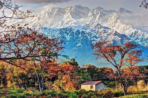 Palampur, Himachal, India