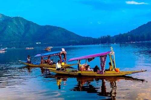 Shikara Ride At Dal Lake, Srinagar