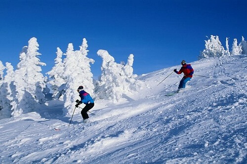 Manali Couple Package